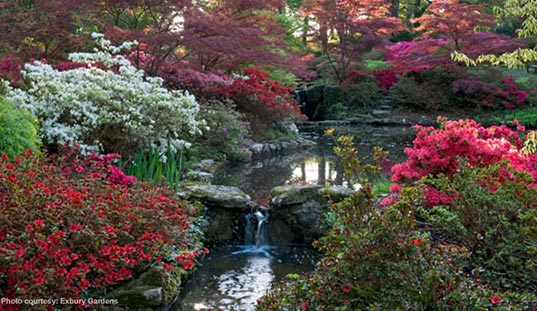 The Gardens at Exbury