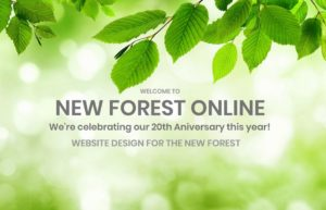 new forest online 20 years